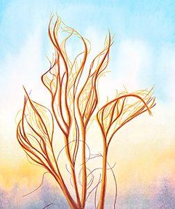 Desert Honey. Watercolor and Gouache on paper. 10.25 x 14. ItsAllMalarkey.com