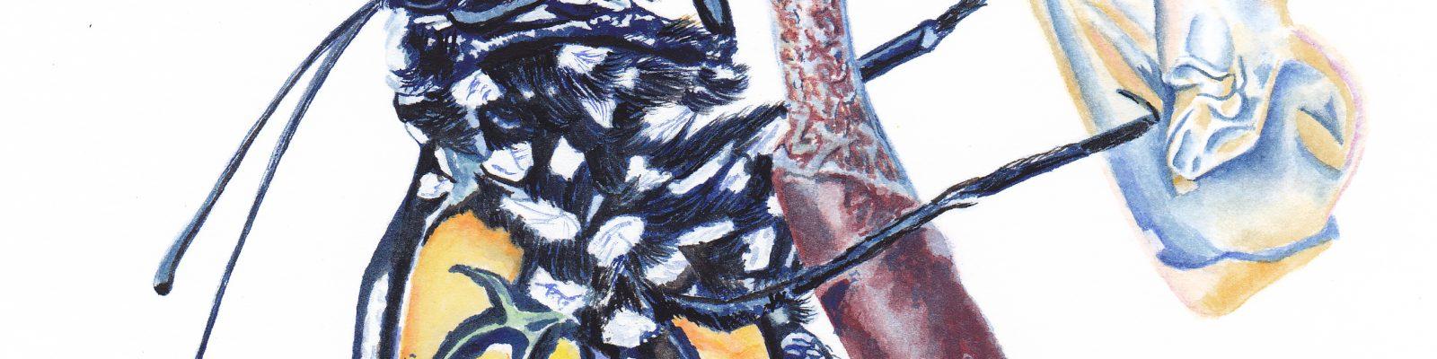 Emerge. Gouache 7.5x10.5 Brandi Malarkey, Artist. ItsAllMalarkey.com